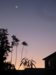 Dusky lavender sky